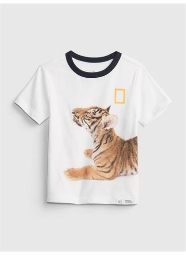 Gap Organik Pamuklu  National Geographic Desenli T-Shirt Beyaz